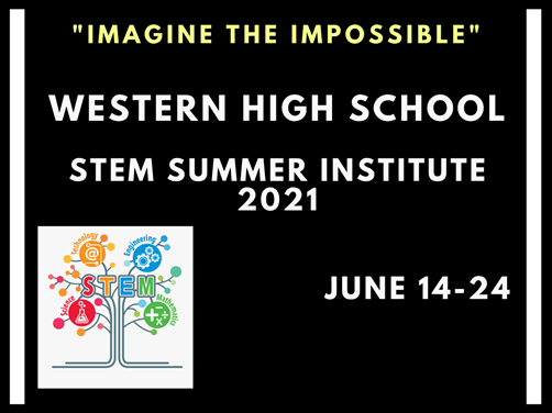 STEM Summer Institute image