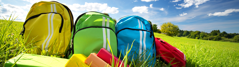 Picture of Book bags